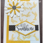 Paper Pumpkin altermative card made with Stampin